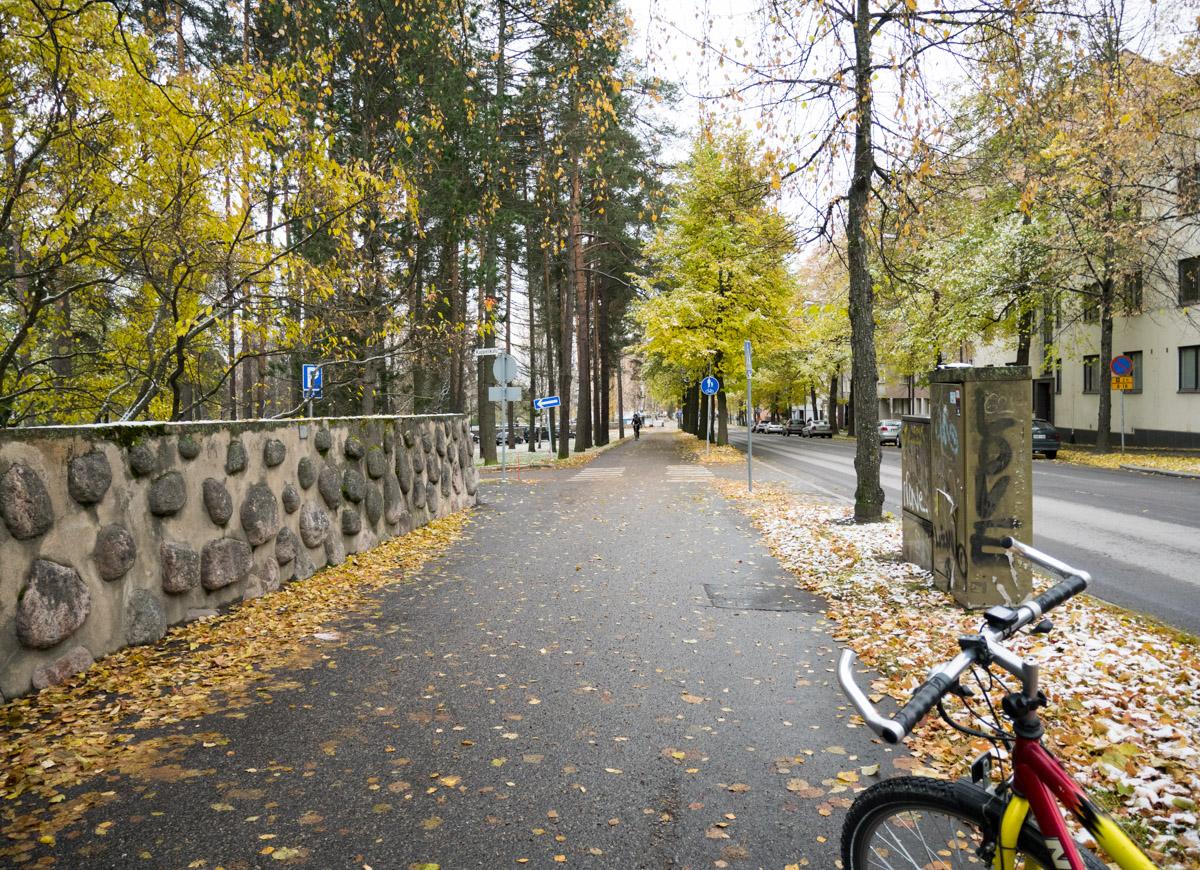 Onko yksisuuntainen Puistokatu oikeasti turvallinen pyöräilijöille?